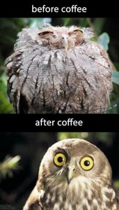before-after coffee