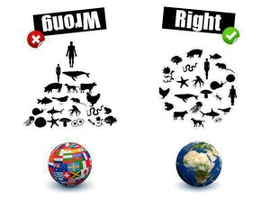 ecological equilibrium