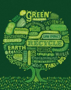 environment wordcloud