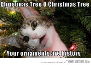 Christmas-ornaments-cat