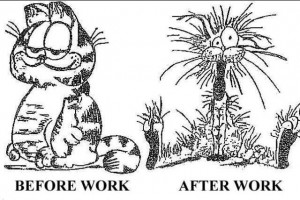 Garfield-after work