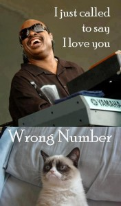 Grumpy cat wrong number