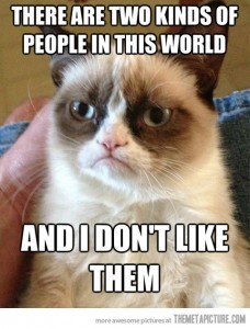 grumpy cat hates people