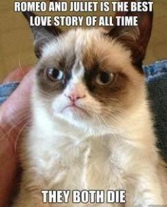 grumpy cat love story