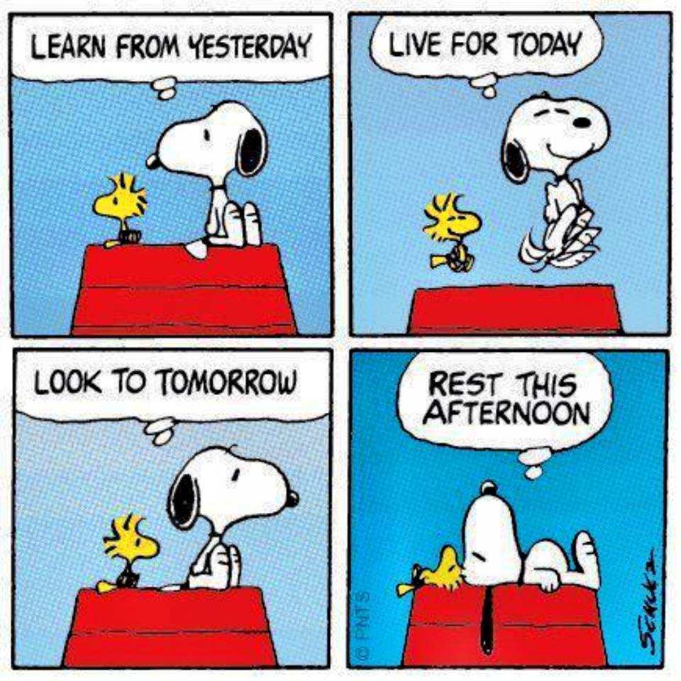 Snoopy-learn-live-look-rest