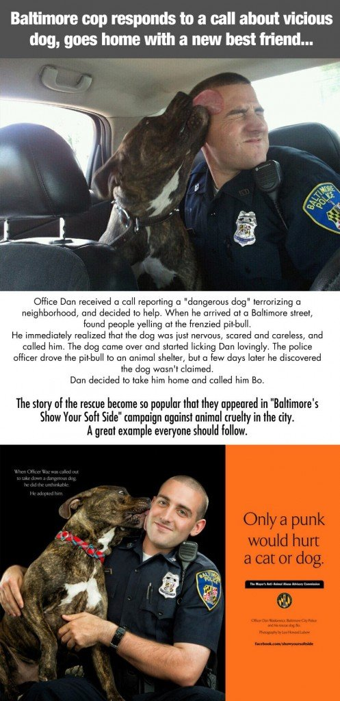cool-dog-rescued-cop-Baltimore-Officer