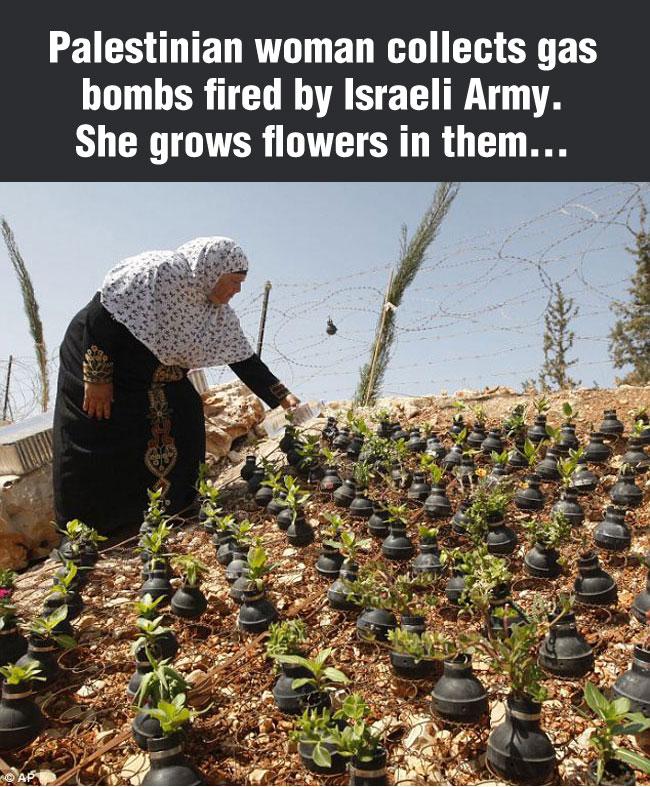 grenades-flower-Palestinian