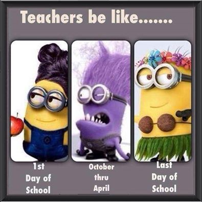 teachers Minions
