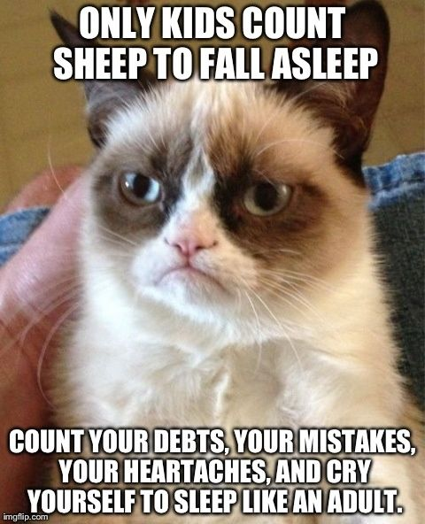 Grumpy cat -count sheep