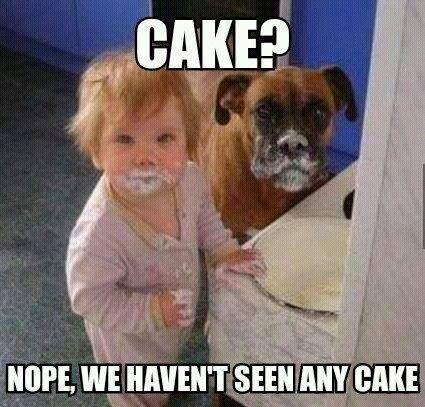 cake stealers