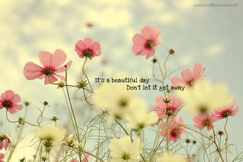 beautiful day - dont let it slip away