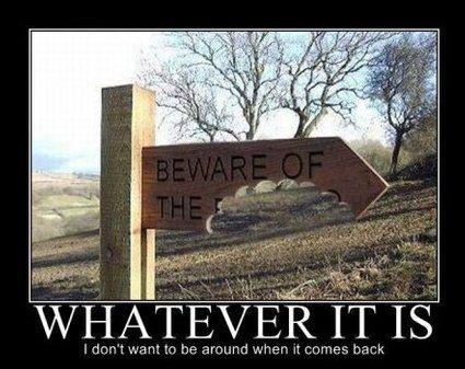 beware of the