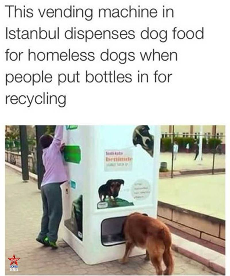 dog food -recycling