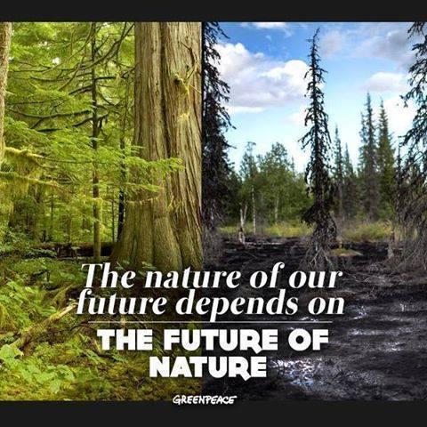 nature future - future nature
