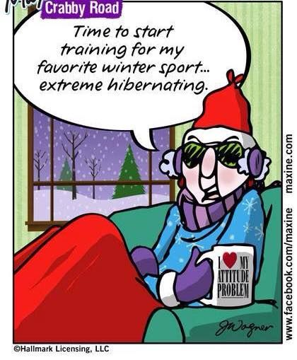 winter hibernating