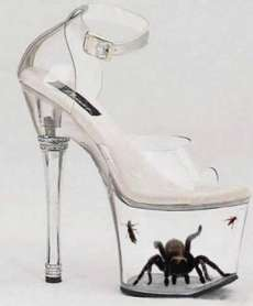 Tarantula-in-Freaky-Shoes