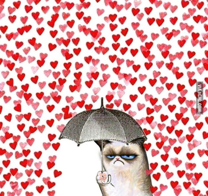 Grumpy cat Valentine
