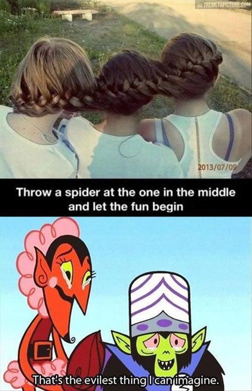 girls-braid-hair-spider