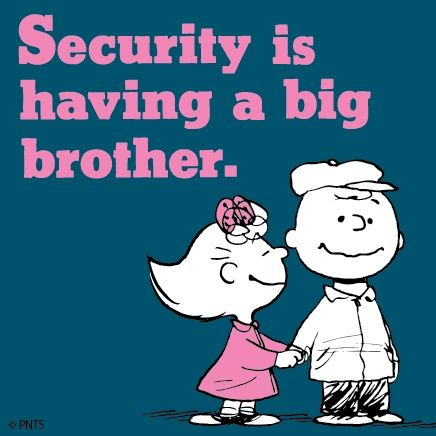 security-big brother