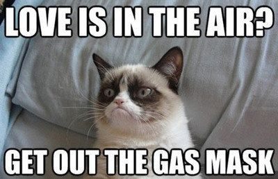 Grumpy cat - love in the air