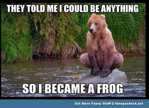 bear can be anything - frog
