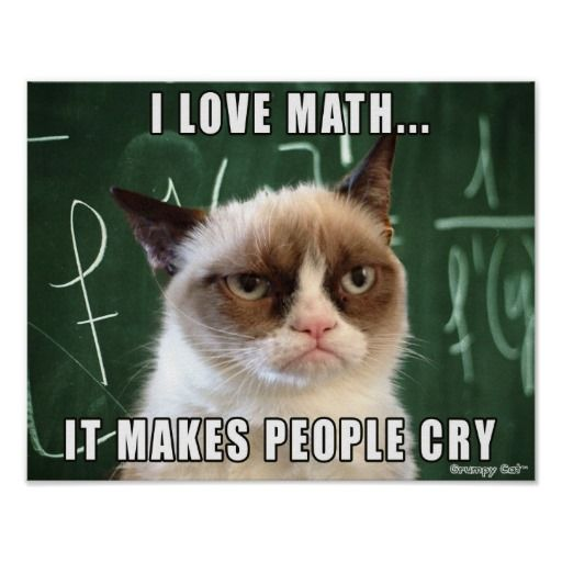 Grumpy cat - love Math