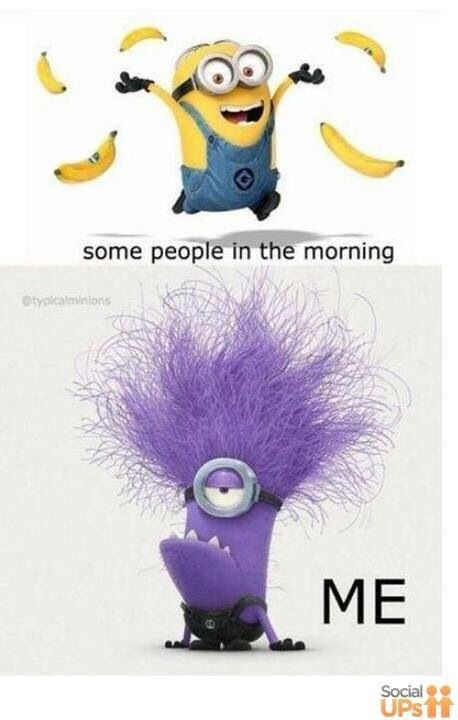 Minion - morning