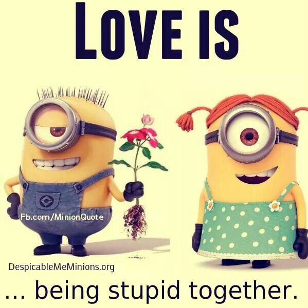 Minions love - being stupid