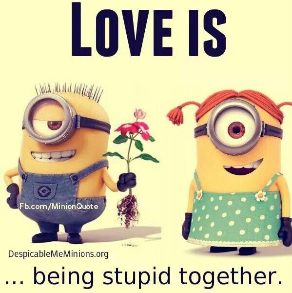 Minions love - being stupid