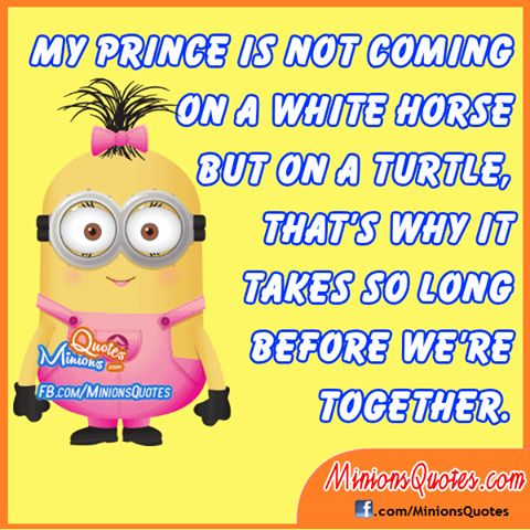my prince coming on turtle