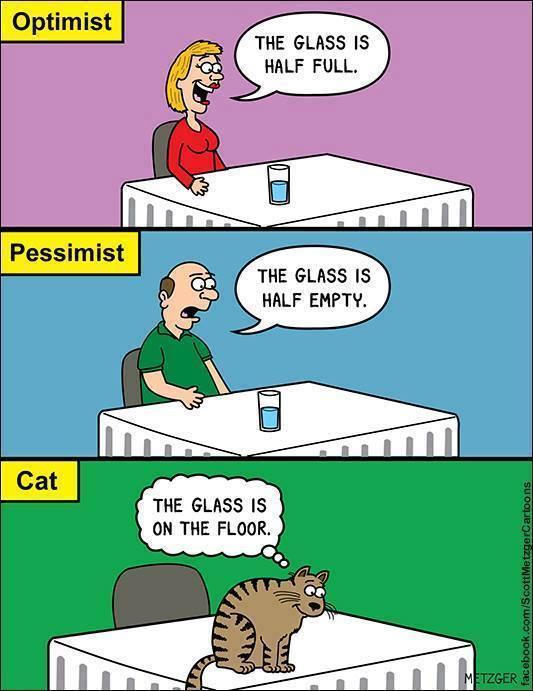 optimist-pessimist-cat
