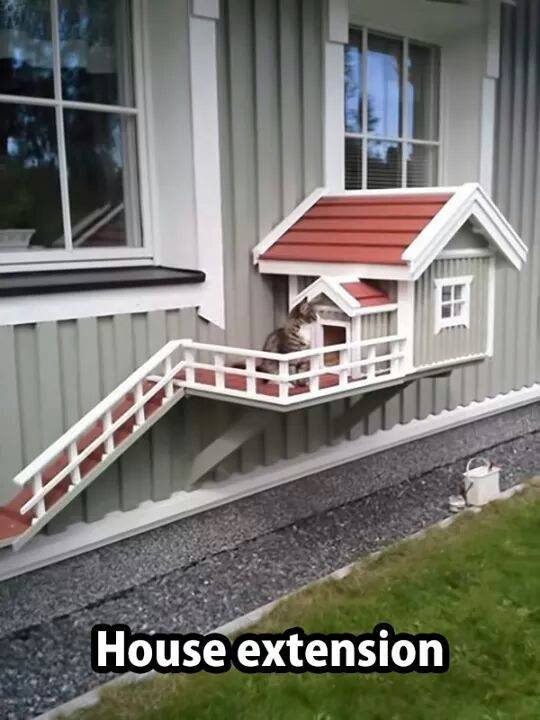 cat home extension