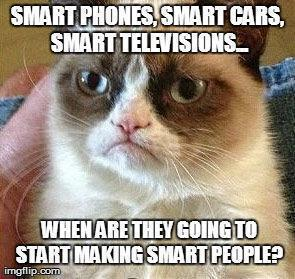 grumpy-cat-smart people