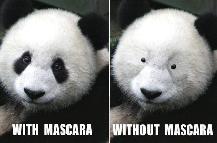 panda make-up