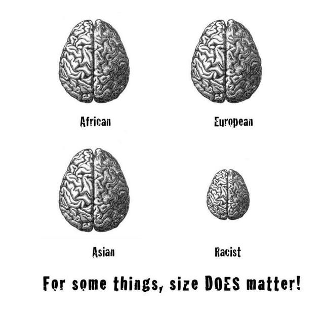 brain-racist-size matters