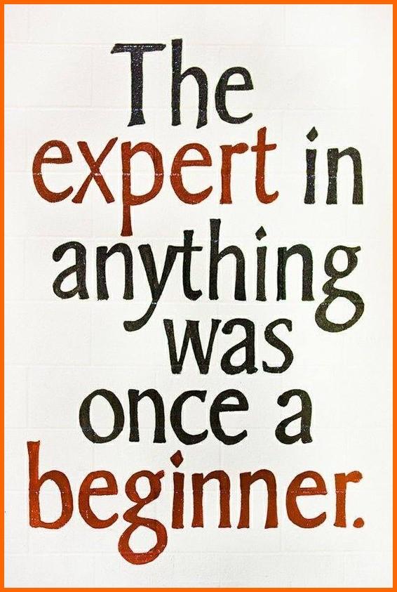 expert - beginner