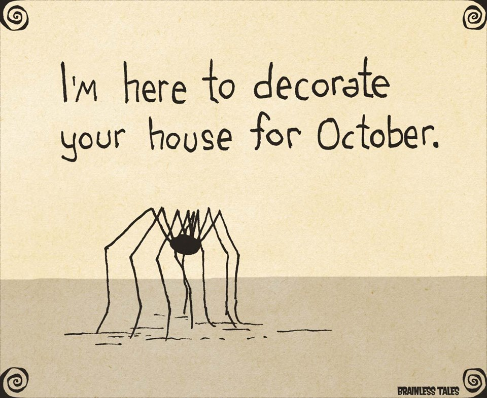 spider decorate Halloween