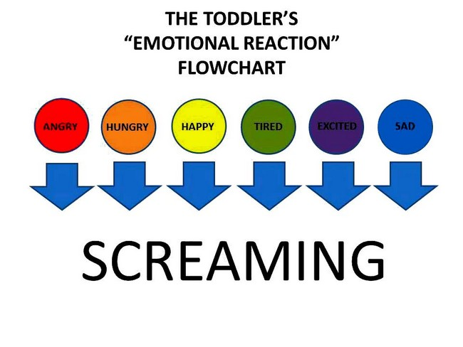 toddlers emotional chart
