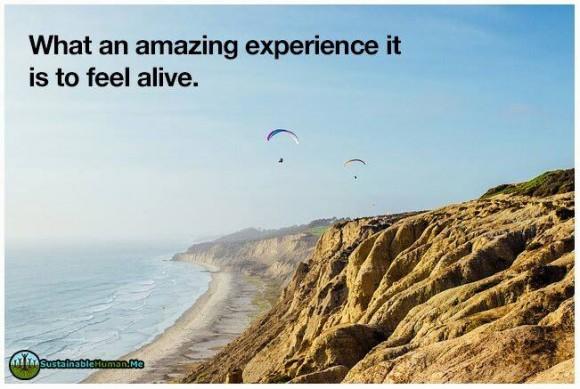 amazing feel alive
