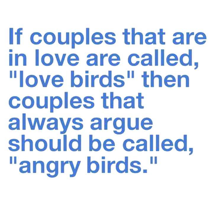 love birds - angry birds