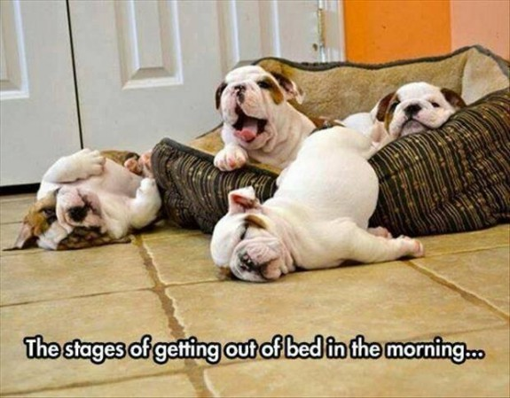 stages getting out bed
