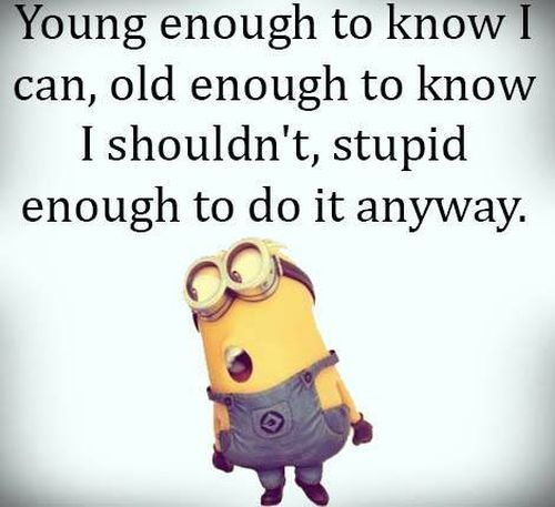 old enough young enough stupid enough