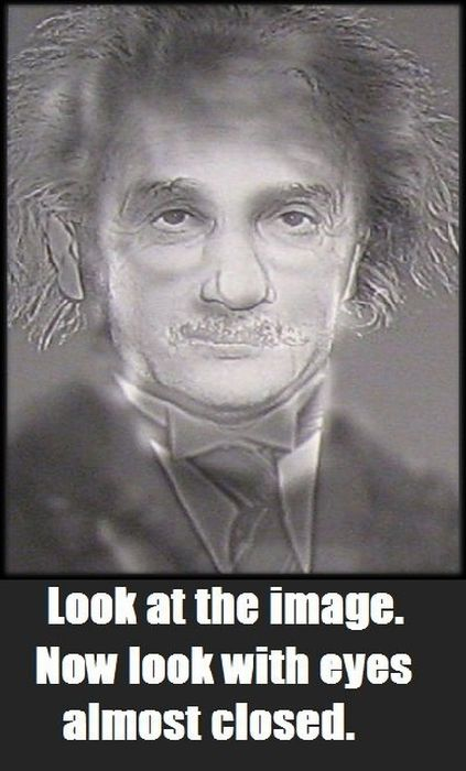 optical illusion Einstein