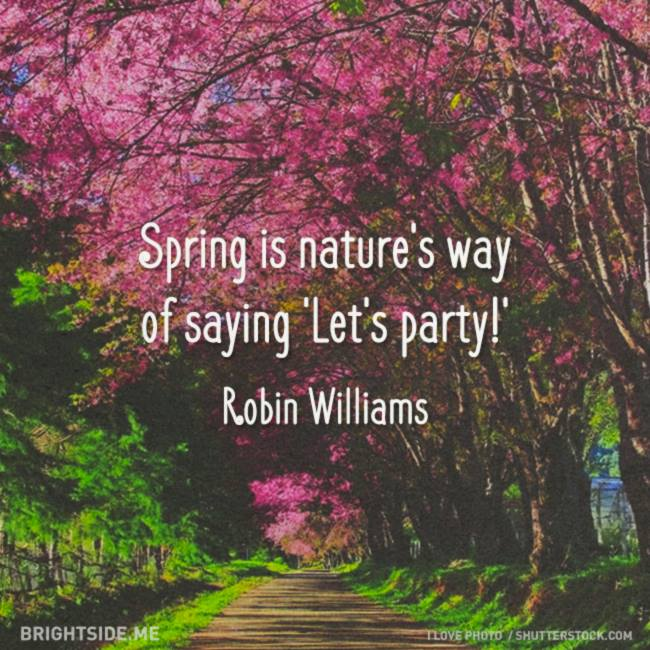 spring - lets party