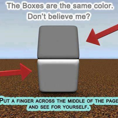 illusion grey boxes