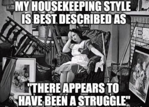 housekeeping style - struggle