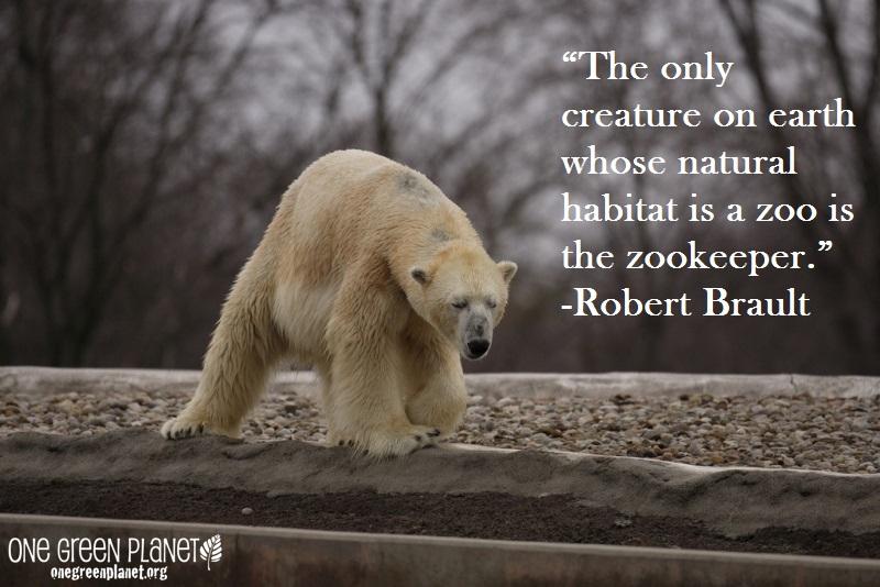 natural habitat zookeeper