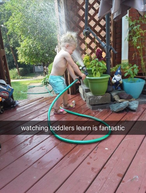toddlers learn