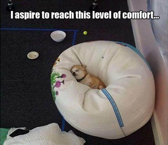 level of comfort