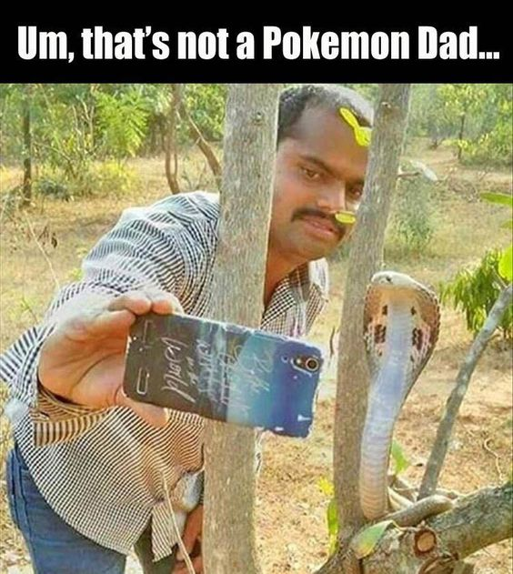 not a pokemon dad